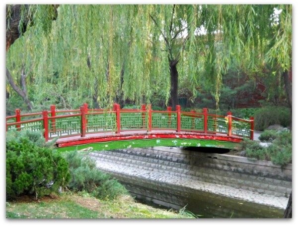 bridge under a weeping willow