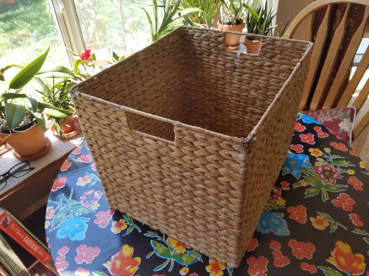 school basket